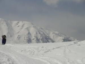 snow in srinagar