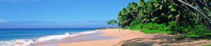 beaches of kerela