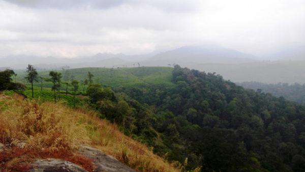 Nallamudi Poonjolai