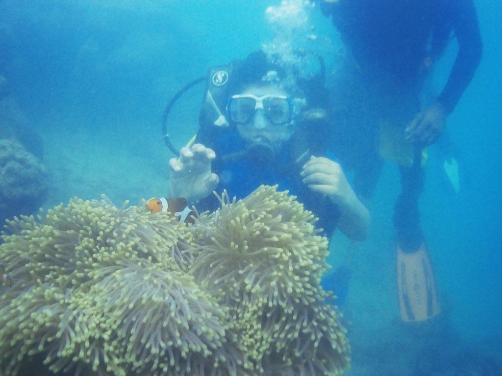 Scuba diving at nemo beach
